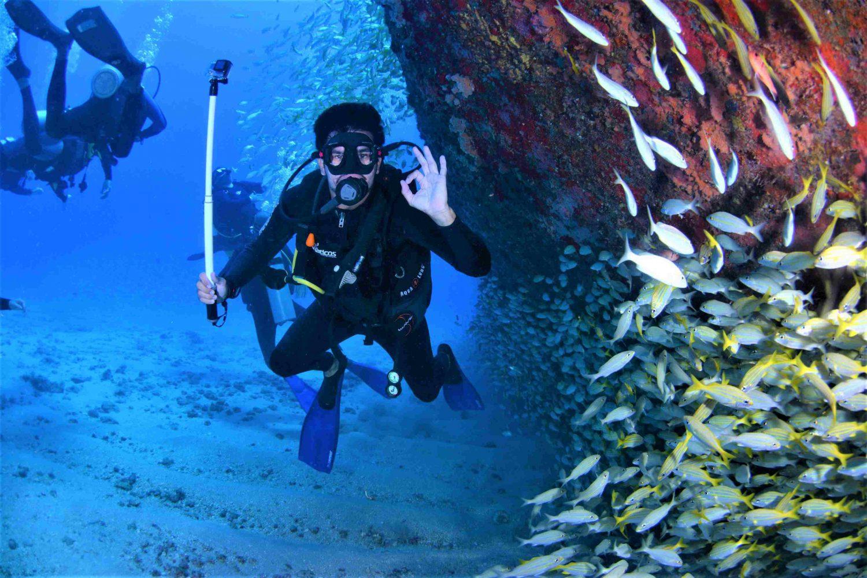 Scuba Diving Andaman Tour Package