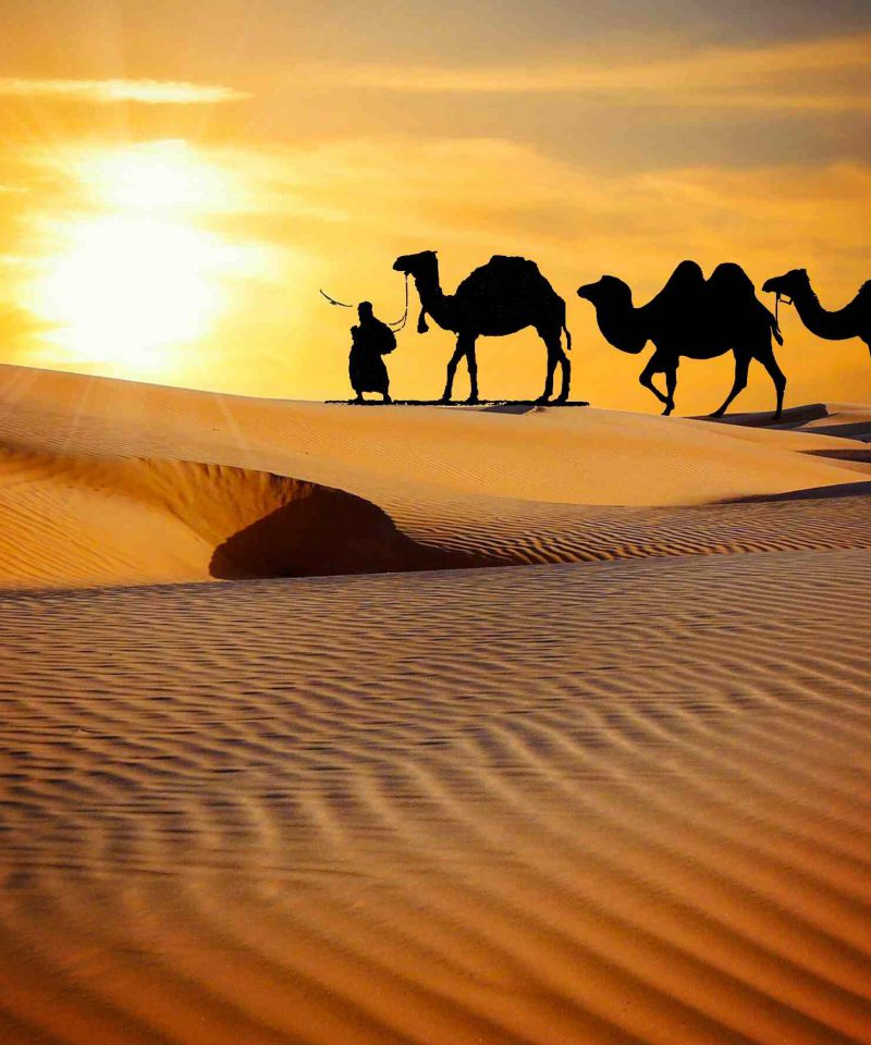 Desert Culture Rajasthan Holiday Trip Package